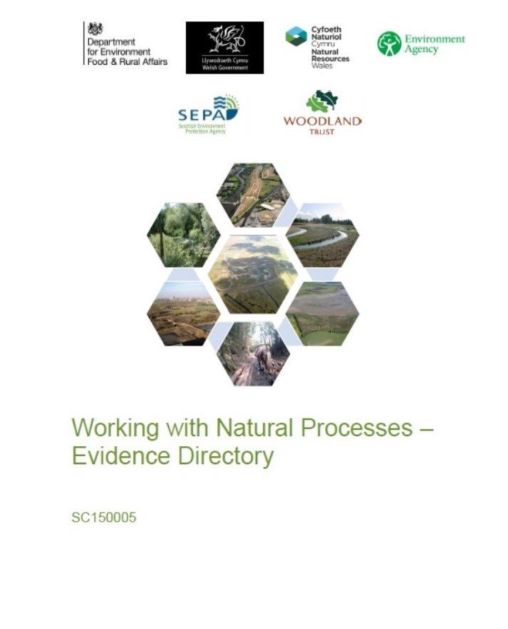 Working with Natural Processes